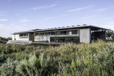 Norval Foundation + Steenberg Wines: Members' Benefits